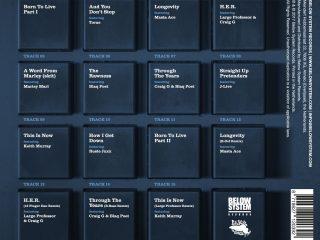 DJ Koss-Born-Live-Vinyl