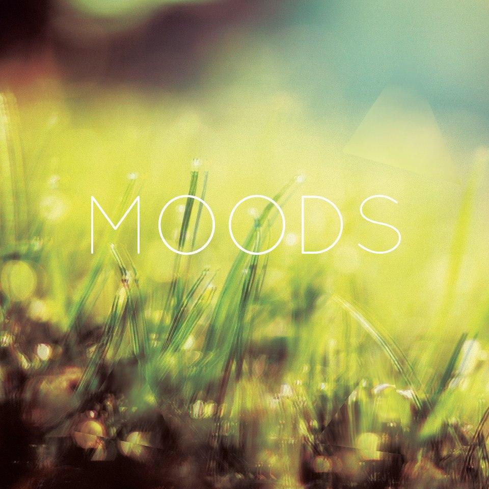 Video: Moods – Dedicated
