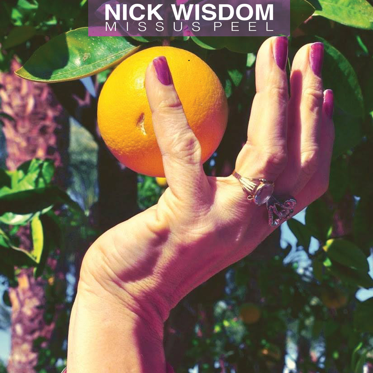 Free Download: Nick Wisdom – Missus Peel