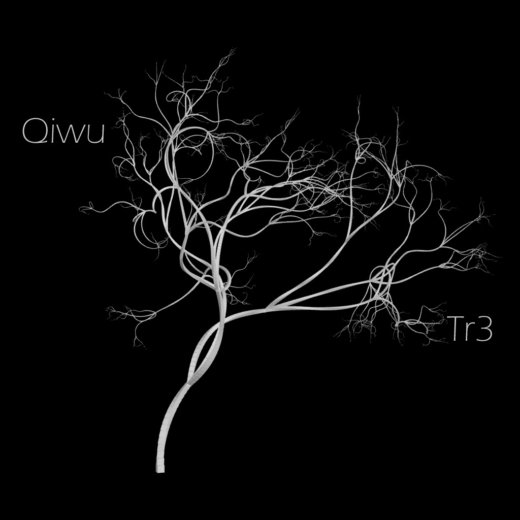 Mix: The Qiwu Selftet – Qiwuserie 1 (2011)