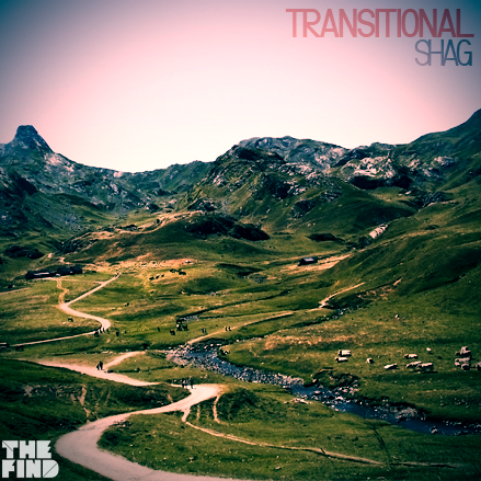 Guest Mix: Shag – Transitional (2011)