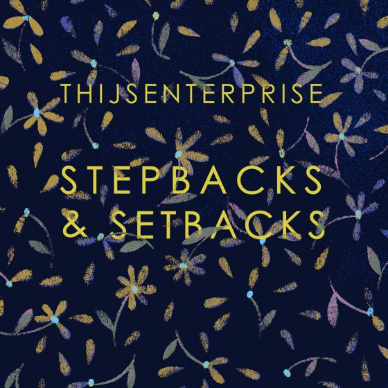 Thijsenterprise-stepbacks-setbacks