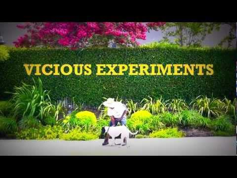 Video: Time Machine – Vicious Experiments (Teaser)