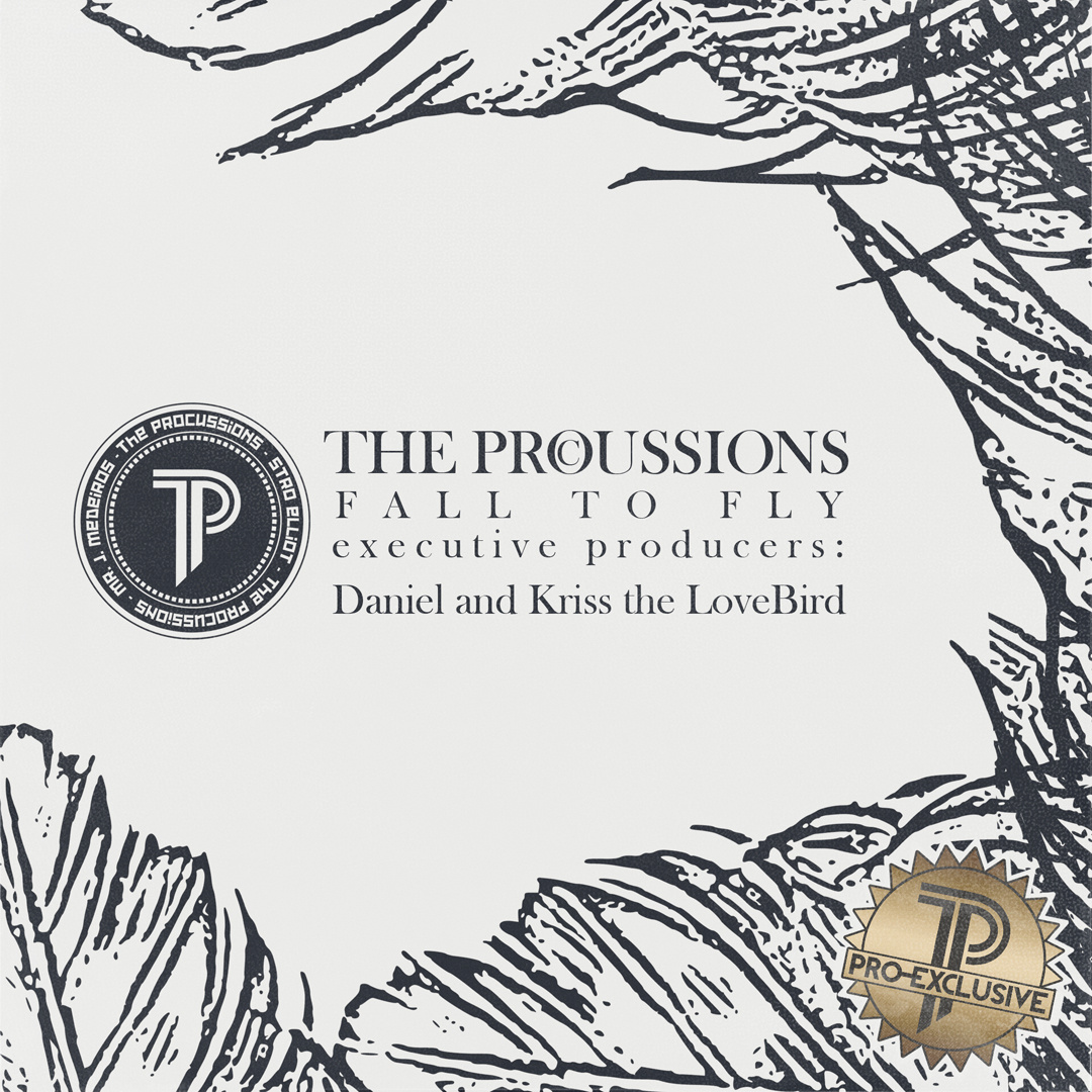 Free MP3: The Procussions – Fall to Fly