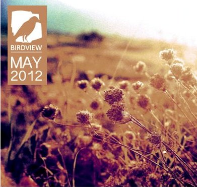 Free Download: Birdview Crew – MAY.EP (2012)