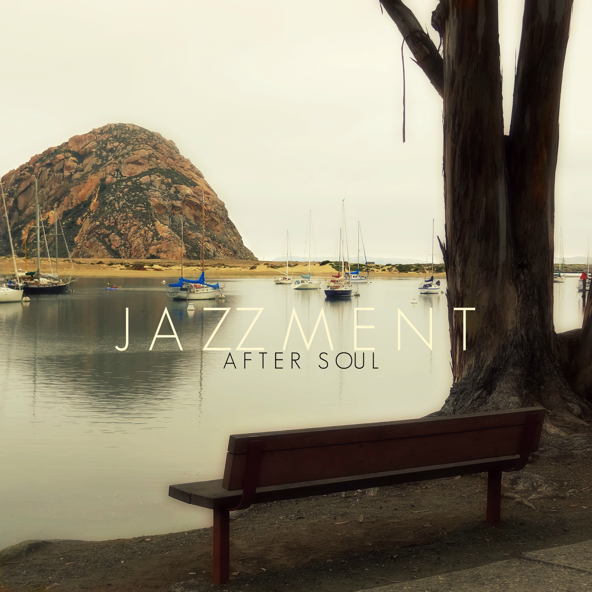 Free Download: The Jazzment – After Soul (2011)