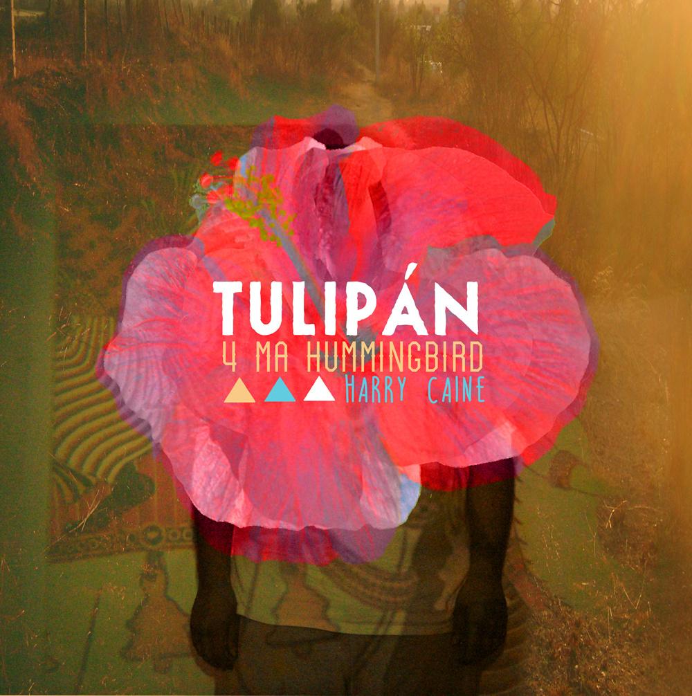Listen: Harry Caine – Tulipán (4 Ma Hummingbird)