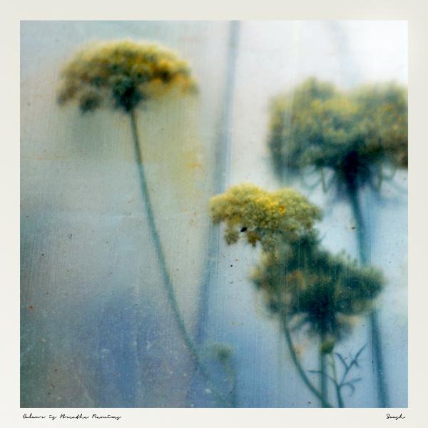 Premiere: Soosh – Colour is Breathe ft. Carmel Khavari (96wrld Remix)